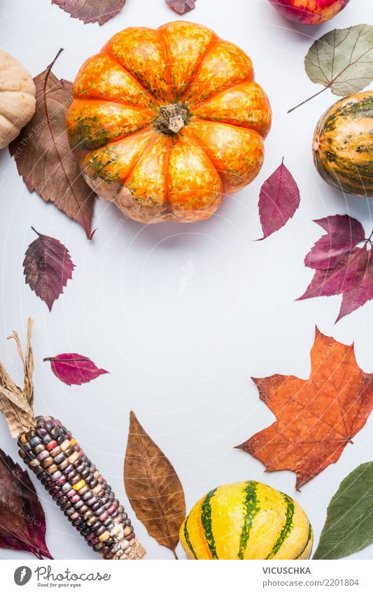 Beautiful autumn background with pumpkin and foliage Food Vegetable Lifestyle Style Design Healthy Eating Garden Thanksgiving Hallowe'en Nature Autumn Leaf