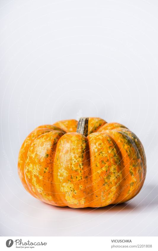 pumpkin Food Vegetable Nutrition Organic produce Vegetarian diet Diet Style Design Healthy Eating Life Thanksgiving Hallowe'en Nature Background picture Pumpkin