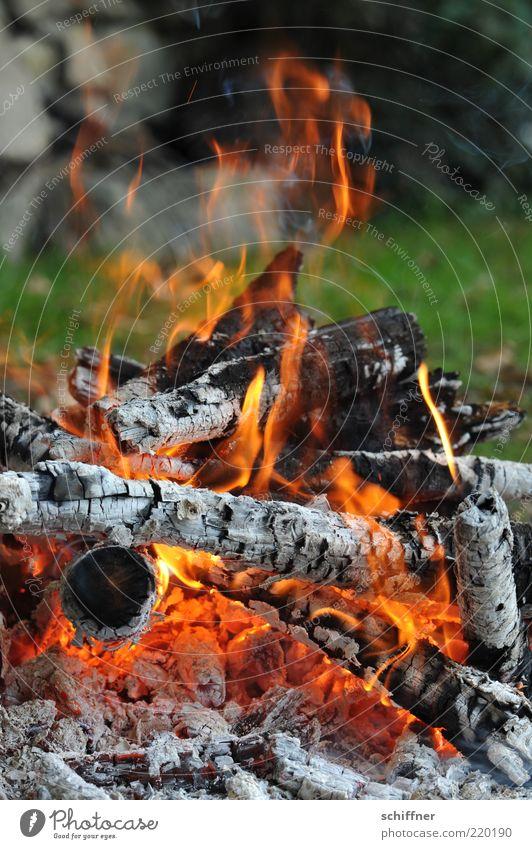 Meadow Wood Warmth Fire Hot Smoke Barbecue (event) Burn Flame Glow Heap Fireplace Heat Ashes Coal Embers