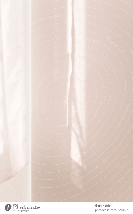 light shadow Wall (barrier) Wall (building) Window Bright Pink Flare Drape Colour photo Subdued colour Interior shot Pattern Light Light (Natural Phenomenon)