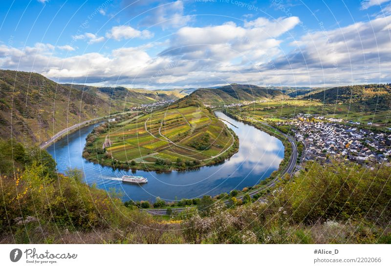 Moselle loop at Bremm Vacation & Travel Sightseeing Nature Landscape Water Sky Clouds Horizon Autumn Beautiful weather Plant Agricultural crop Vineyard Field