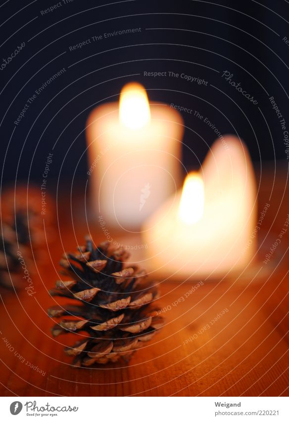 On the Christmas craft table Harmonious Feasts & Celebrations Brown Candle Cone Evening Cozy Winter Seasons Colour photo Interior shot Candle flame Flame