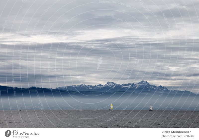 Lake Constance Water Sailing ship Alps Mountain Sky Clouds Mountain range Blue Air Elements Fog White Gray Covered Far-off places Calm Relaxation