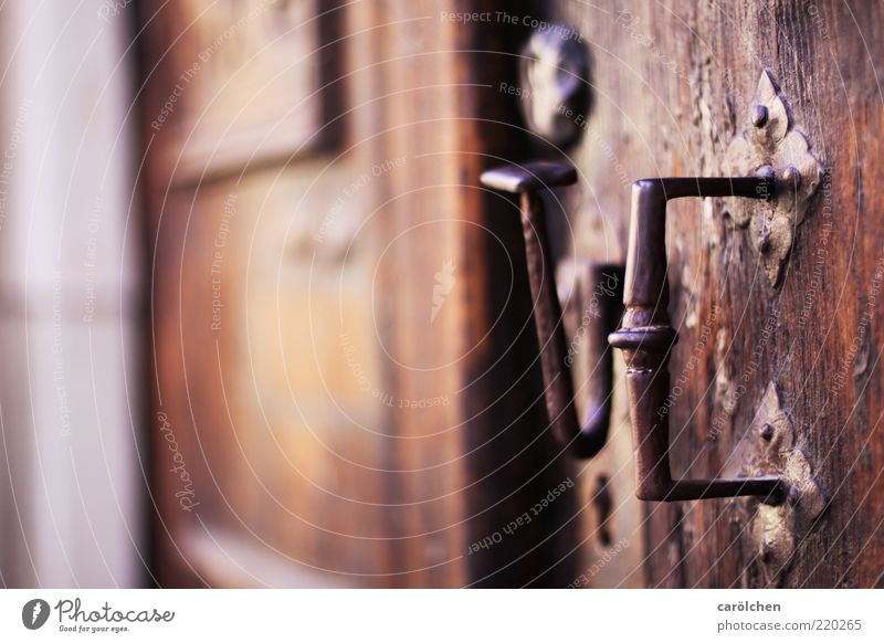 The door to marriage... Wood Metal Steel Brown Door Door handle Old Old building Weathered Colour photo Multicoloured Detail Deep depth of field Deserted