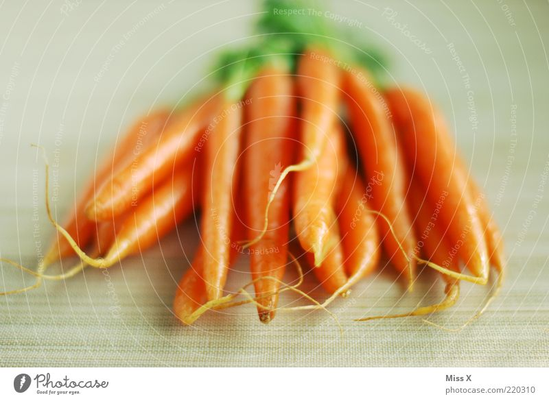 yellow rumm Food Vegetable Nutrition Organic produce Vegetarian diet Fresh Delicious Carrot Crunchy Colour photo Multicoloured Deserted Neutral Background