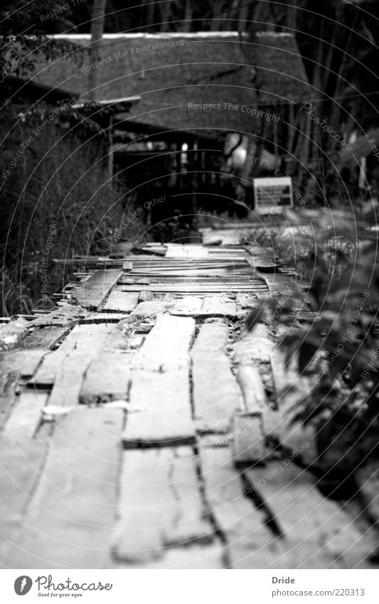 Colorless confidence Fishing village Deserted Architecture Poverty Simple Uniqueness Broken Natural Black White Black & white photo Exterior shot Day Light