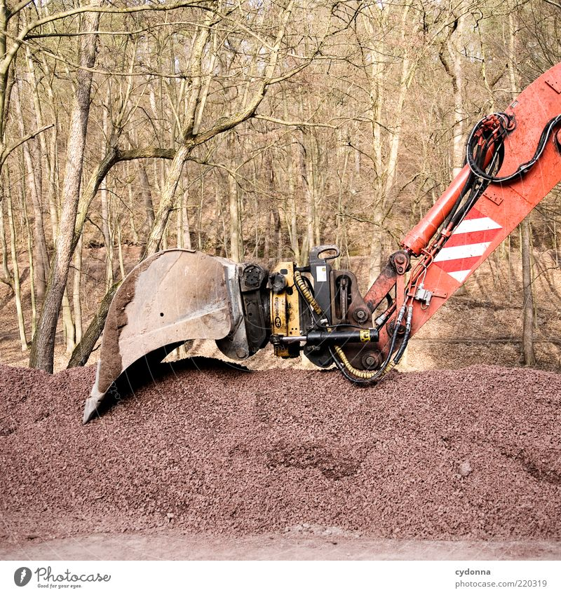 Nature Tree Calm Forest Power Environment Technology Break Construction site Gravel Industry Stagnating Excavator Closing time Construction machinery Hydraulic