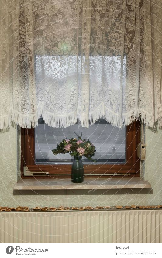 grandma Living or residing Flat (apartment) Interior design Decoration Wallpaper Room Window Curtain Window board Flower Heating Venetian blinds Old Gloomy