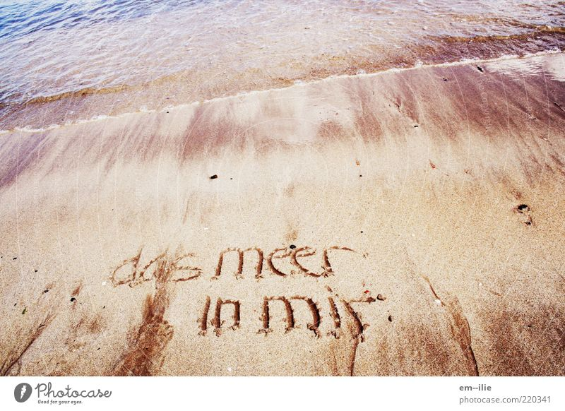 Nature Water Ocean Summer Beach Calm Sand Contentment Coast Weather Characters Peace Sign North Sea Belief Emotions