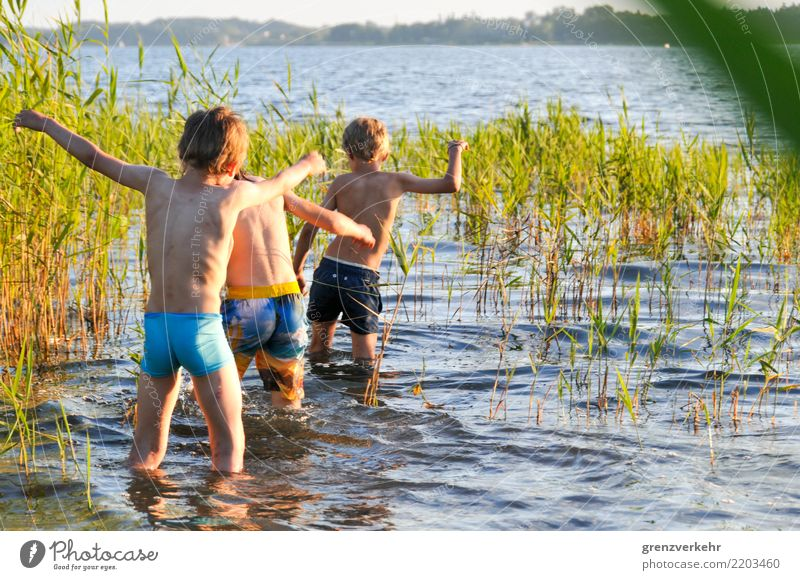 sea maintenance Swimming & Bathing Summer Human being Boy (child) Infancy 3 Group of children 8 - 13 years Child Adventure Common Reed Swimming lake Lake
