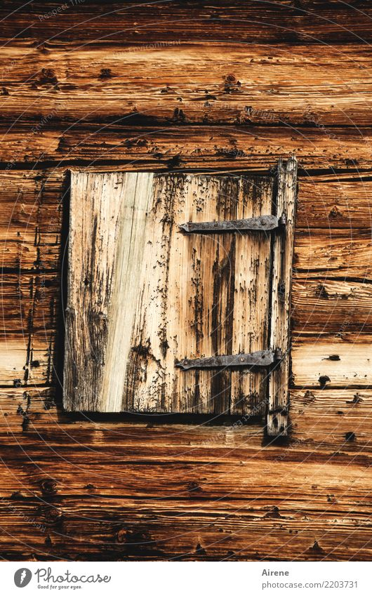 Go, open the window! Flat (apartment) Hut Wooden house Log home Alpine hut Facade Window Shutter Old Poverty Exceptional Simple Natural Brown Safety Protection