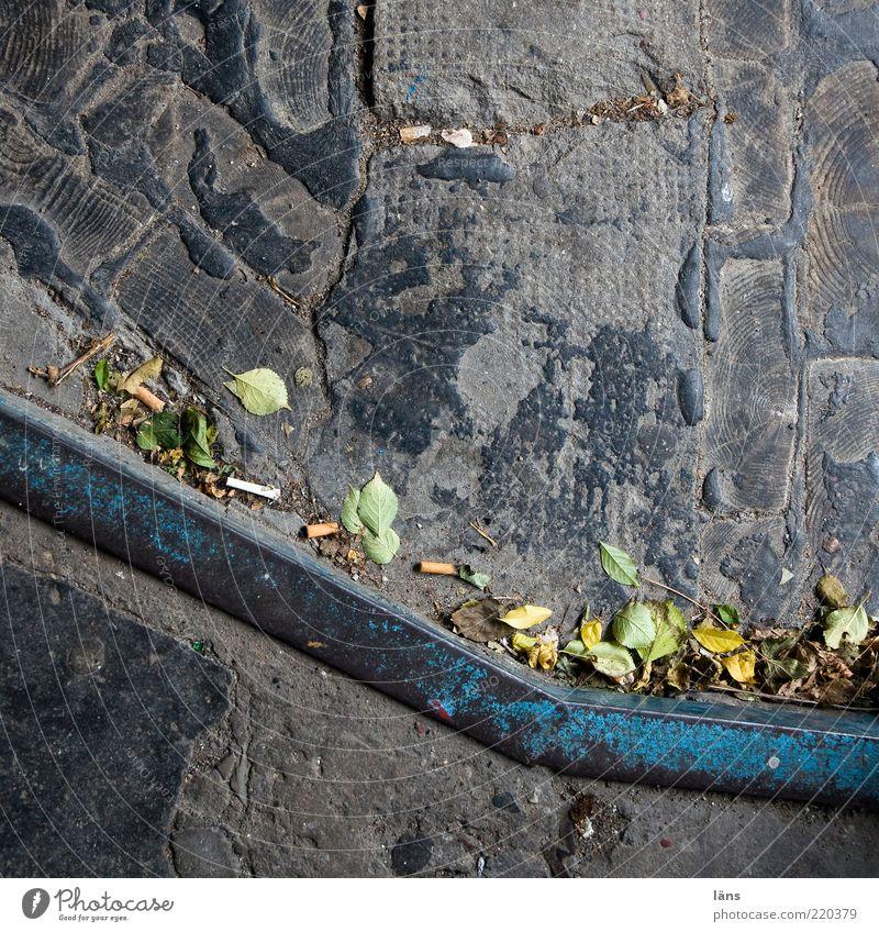 material mix Concrete Wood Metal Old Blue Gray Decline Transience Change Lanes & trails Tar Autumn Leaf Autumn leaves Landing Level Go up Line Colour photo