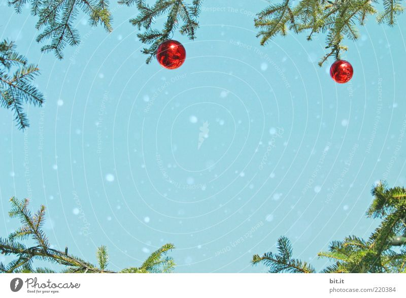 Nature Christmas & Advent Sky Blue Red Winter Snow Snowfall Moody Glittering Design Kitsch Decoration Culture To fall