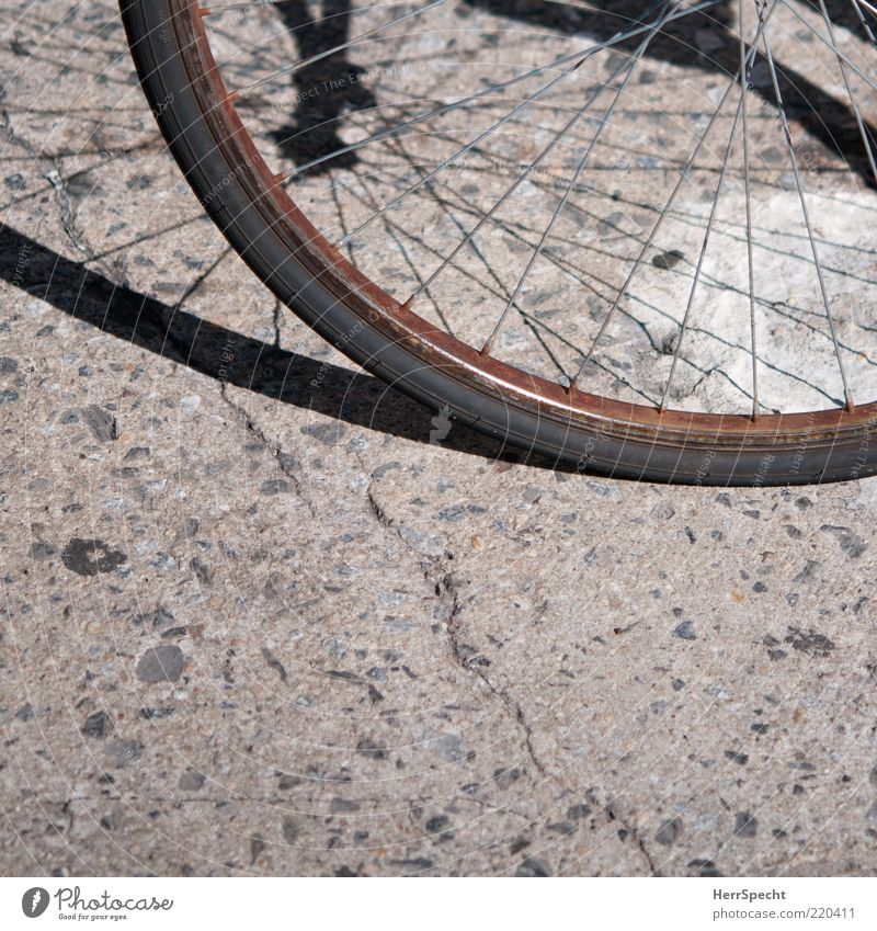 Old Black Gray Metal Brown Bicycle Round Derelict Decline Rust Section of image Partially visible Weathered Scrap metal Spokes Wheel rim