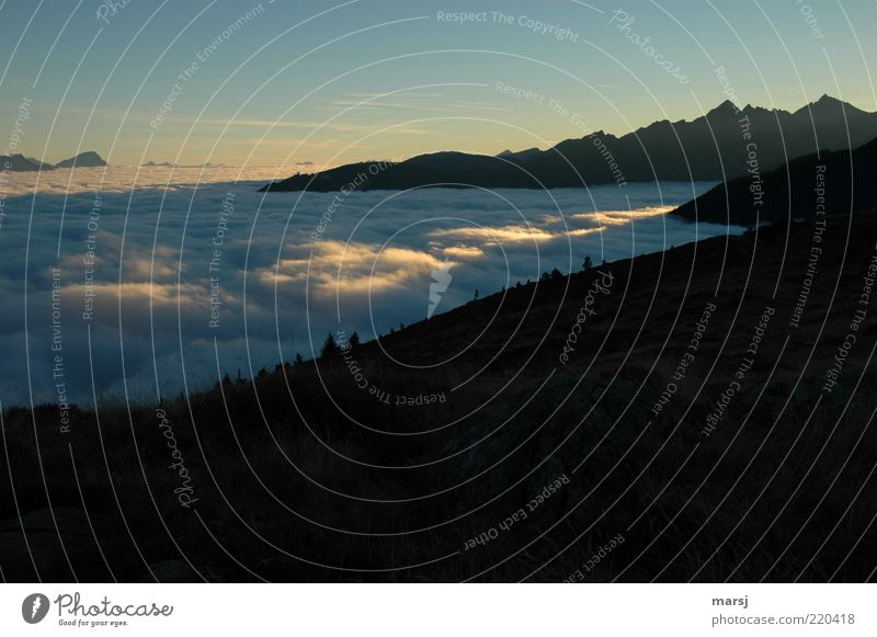 light track Relaxation Calm Leisure and hobbies Trip Mountain Nature Landscape Air Sky Cloudless sky Sunrise Sunset Sunlight Beautiful weather Fog Alps