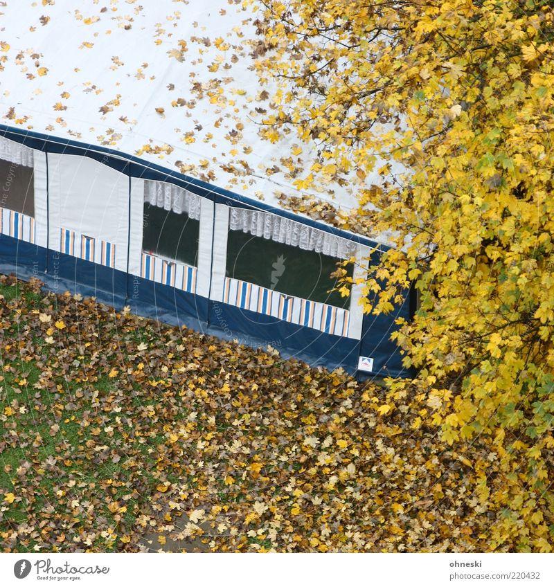 camping Vacation & Travel Camping Caravan Tent Autumn Tree Leaf Living or residing Uninhabited Winter break Colour photo Bird's-eye view Off-Season