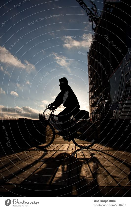 when the sun shines again Cycling Movement Driving Sunset Bicycle Wood Footbridge In transit Back-light Sunlight Day Colour photo Exterior shot Twilight Shadow