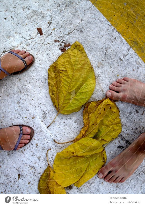 Where are you going? Human being Masculine Feminine Life Feet 2 Nature Autumn Plant Leaf Lanes & trails Flip-flops Stone Concrete Environment Yellow White