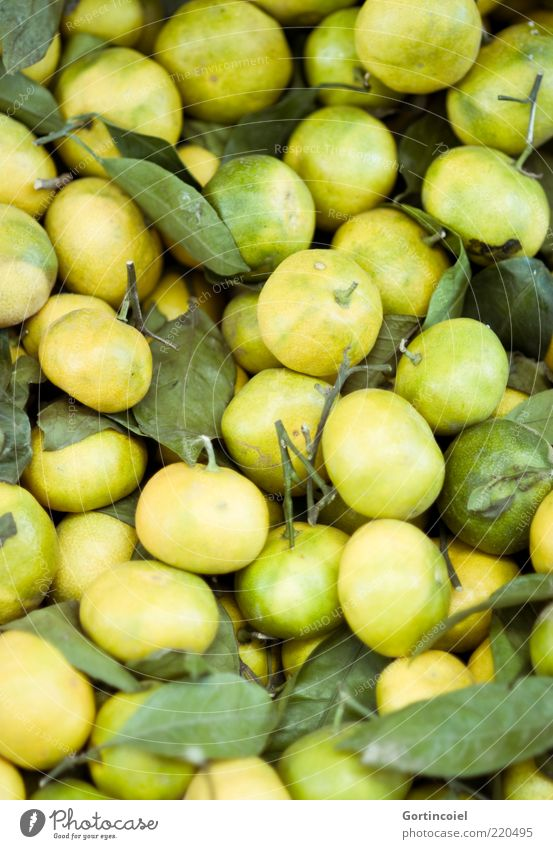 Green Nutrition Yellow Food Fruit Fresh Lie Natural Many Ecological Tropical fruits Sour Biological Tangerine Citrus fruits Immature