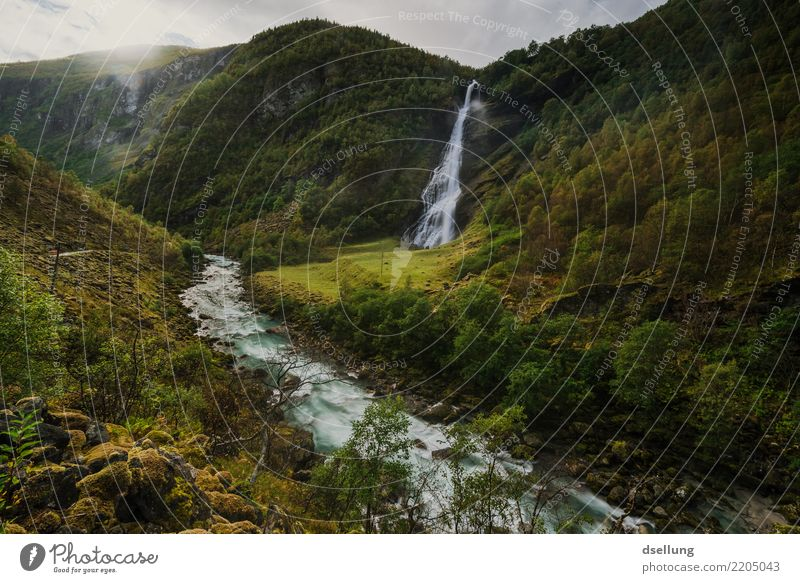Waterfall and river in a green valley Vacation & Travel Tourism Trip Summer vacation Mountain Hiking Landscape Autumn Beautiful weather Meadow Forest Hill Rock