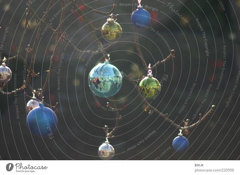 Christmas & Advent Tree Moody Feasts & Celebrations Glittering Kitsch Decoration Point Sphere Illuminate Dew Glitter Ball Hang Tradition Balance