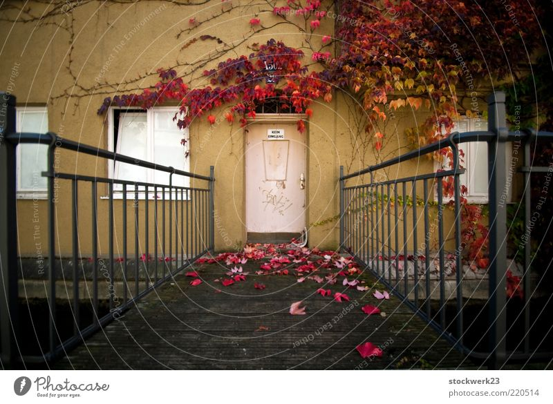No entrance! Flat (apartment) House (Residential Structure) Autumn Tree Leaf Deserted Bridge Manmade structures Building Architecture Wall (barrier)