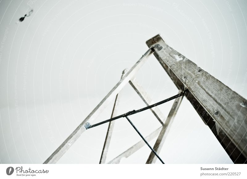 under construction Wall (barrier) Wall (building) Painting (action, work) Bleak Ladder Positive Wooden ladder Redecorate Redevelop Electric bulb Lamp Ceiling