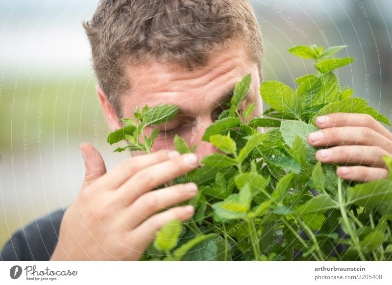 Young man smells fresh mint outdoors Food Herbs and spices Mint Mint leaf Nutrition Organic produce Vegetarian diet Healthy Health care Healthy Eating