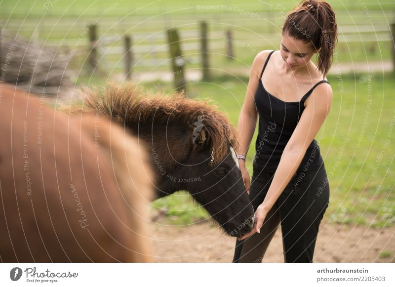Young woman with ponytail on horse paddock at the horses Happy Leisure and hobbies Ride Equestrian sports Horse lover Stable Agriculture Forestry Human being