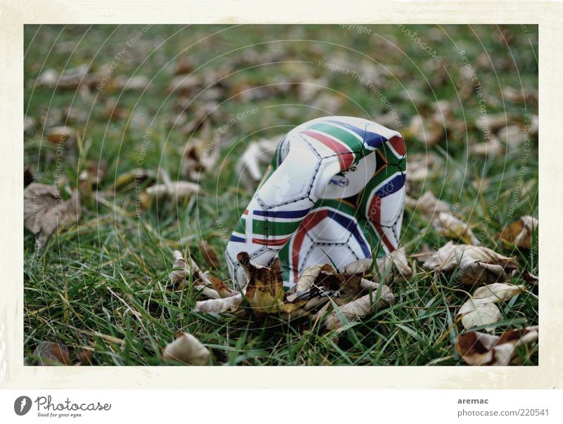 The air's out. Ball sports Foot ball Nature Plant Autumn Grass Leaf Broken Level Colour photo Subdued colour Exterior shot Close-up Deserted Day