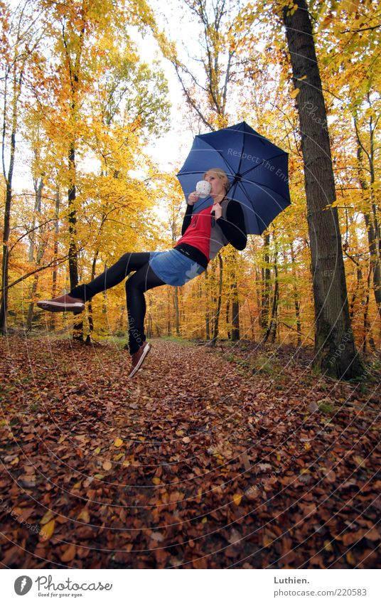 tea party Human being Feminine Young woman Youth (Young adults) Woman Adults 1 Environment Plant Autumn Forest Flying Drinking Exceptional Blonde Blue