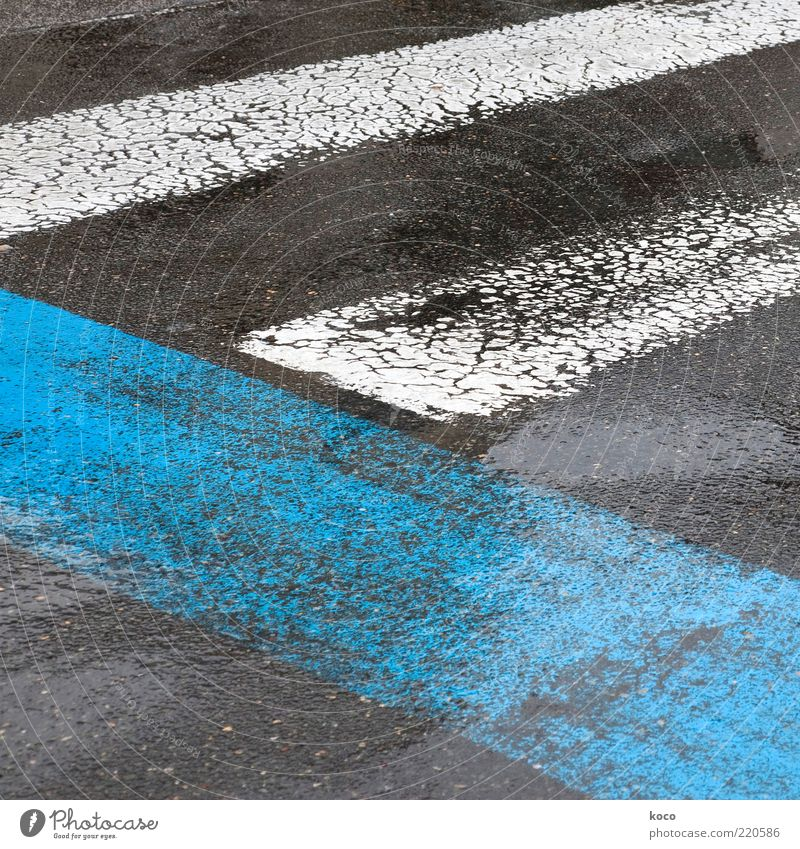 blue-white-black Water Summer Bad weather Rain Street Zebra crossing Pedestrian crossing Ground markings Signs and labeling Line Sharp-edged Simple Blue Black