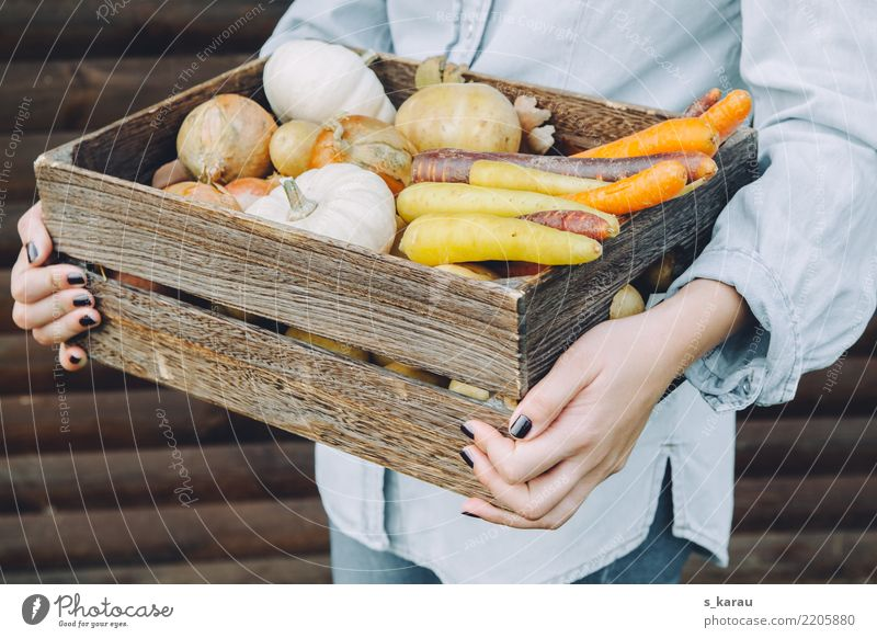 Woman Human being Youth (Young adults) Hand 18 - 30 years Adults Autumn Healthy Natural Feminine Food Nutrition Fresh Agriculture Vegetable Harvest