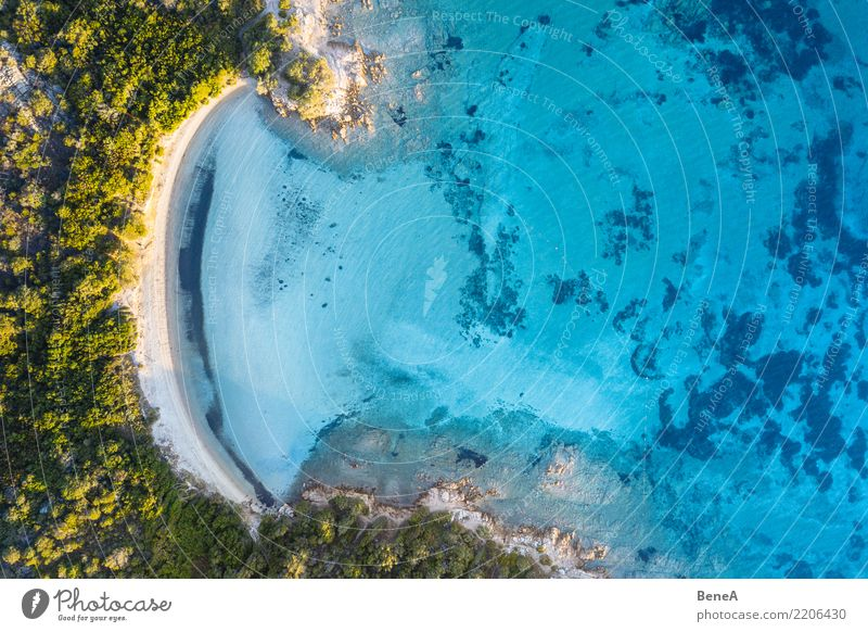 Lonely bay with white sand beach and turquoise sea from above Relaxation Swimming & Bathing Vacation & Travel Tourism Trip Adventure Far-off places Freedom