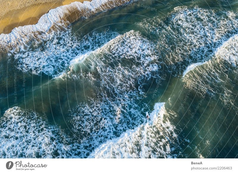 Surfers and waves in the sea on the sand beach from above Exotic Swimming & Bathing Leisure and hobbies Vacation & Travel Tourism Trip Adventure Far-off places