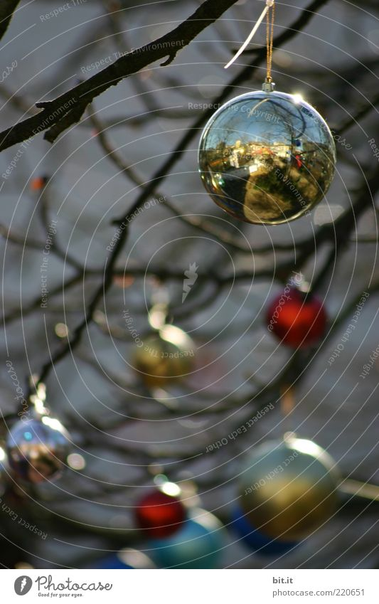 Balance II Feasts & Celebrations Winter Kitsch Odds and ends hang conceit Tradition Christmas & Advent Glitter Ball Christmas decoration Twigs and branches