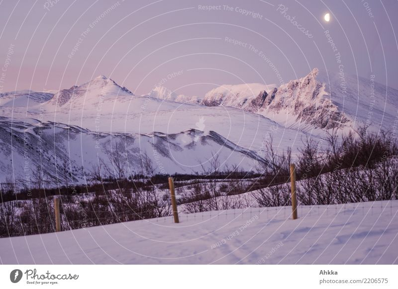 Winter morning in the Rondane, moon, snow, mountain landscape Vacation & Travel Adventure Far-off places Expedition Winter sports Landscape Night sky Moon Ice