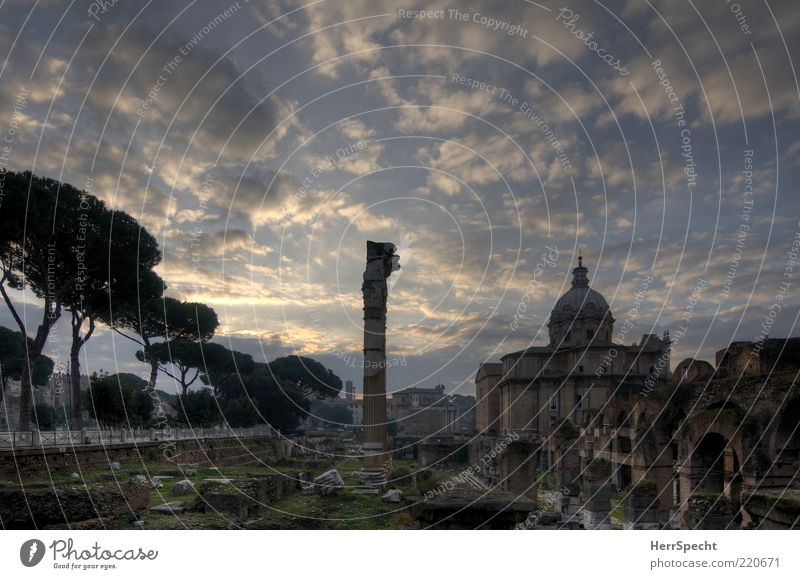 Forum Romanum at dawn Sky Clouds Beautiful weather Rome Capital city Church Tourist Attraction Landmark Monument Forum Romano Old Esthetic Blue Gray Ruin