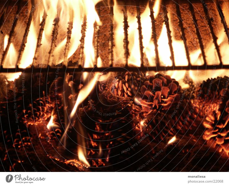 Blaze Rust Odor Flame Barbecue (apparatus) Embers Fir cone