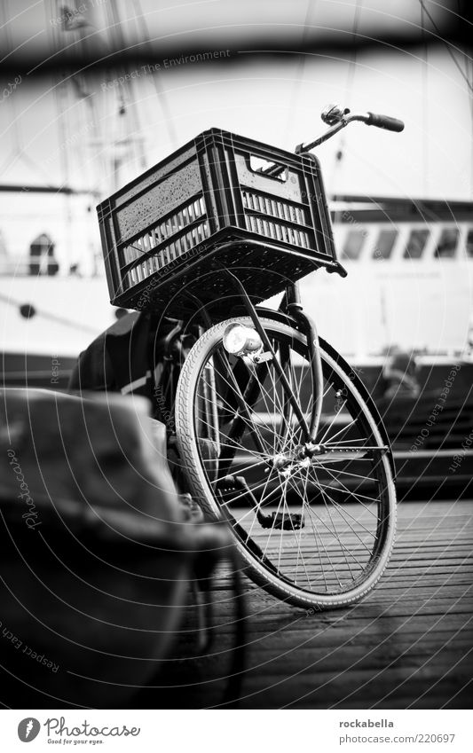 Vacation & Travel Emotions Bicycle Leisure and hobbies Wet Trip Esthetic Harbour Vehicle Basket Netherlands Means of transport Black & white photo Amsterdam