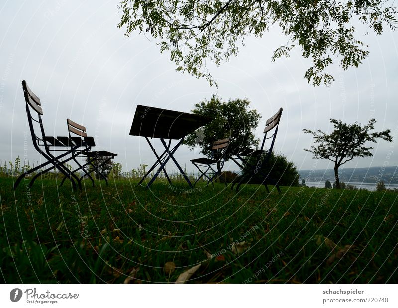 Nature Sky Tree Leaf Loneliness Far-off places Meadow Autumn Grass Sadness Landscape Metal Sit Table Chair Transience