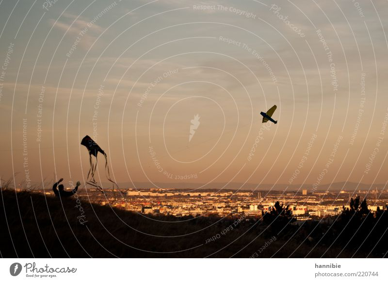...higher! Leisure and hobbies Trip 1 Human being Sky Clouds Wind Town Flying Playing Joie de vivre (Vitality) Ease Kite Hang gliding Vantage point Silhouette
