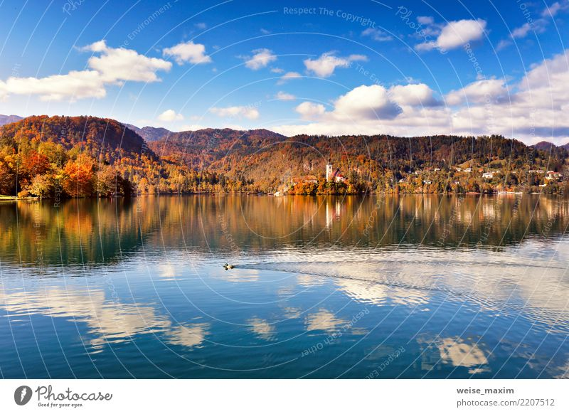 Amazing autumn View On Bled Lake. Slovenia Mountain Range Sky Nature Vacation & Travel Blue Summer Town Beautiful Green Landscape Tree Forest Autumn Tourism