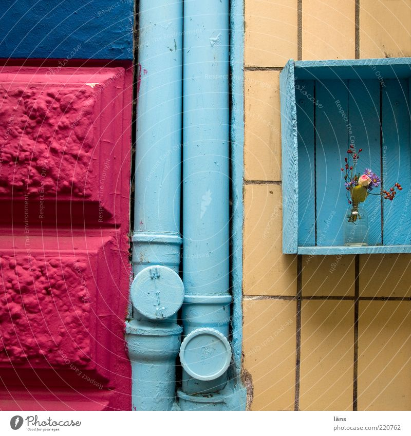 Old Flower Blue Plant House (Residential Structure) Wood Stone Building Art Pink Facade Decoration Tile Steel Bouquet Crate