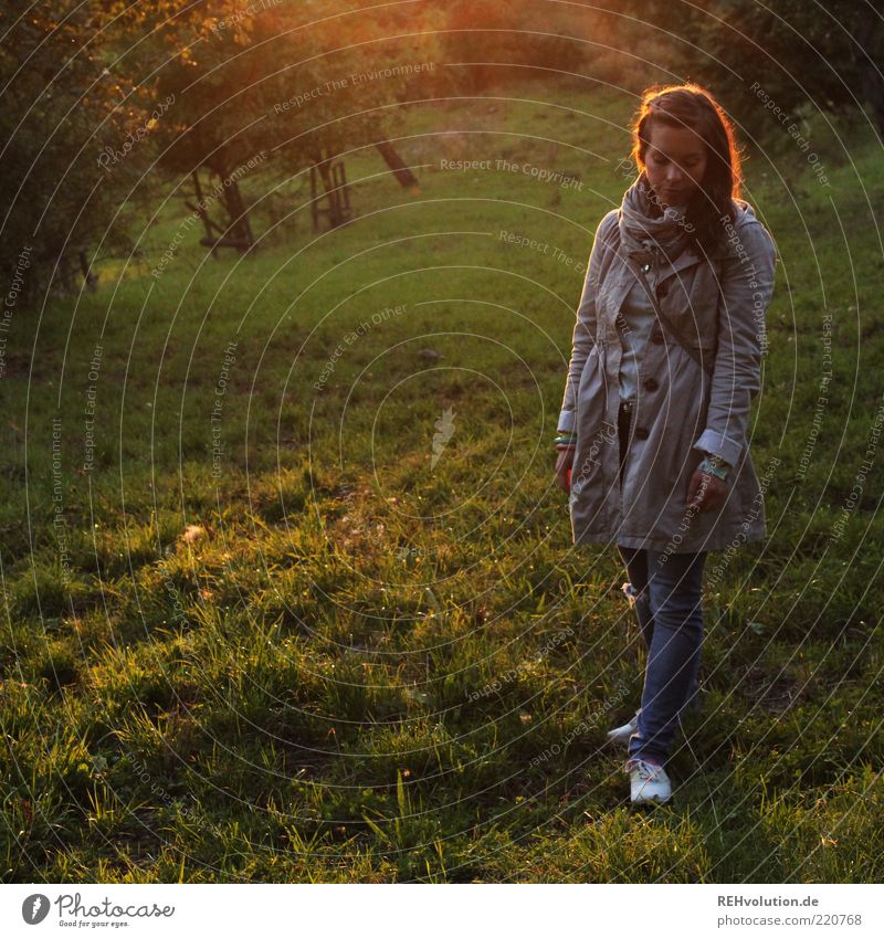 Woman Human being Nature Youth (Young adults) Beautiful Calm Leaf Loneliness Meadow Feminine Grass Sadness Think Moody Adults