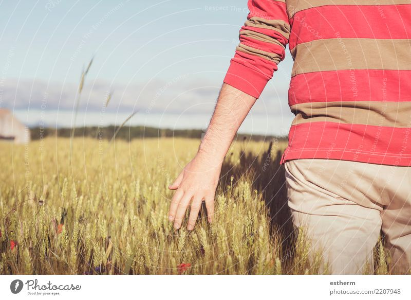 hand and wheat Lifestyle Vacation & Travel Adventure Freedom Human being Masculine Young man Youth (Young adults) Man Adults Back 1 30 - 45 years Nature