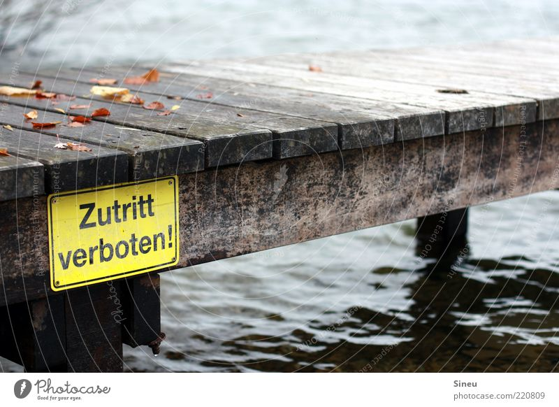 Water Cold Autumn Signs and labeling Footbridge Jetty Bans Autumn leaves Surface of water No admittance