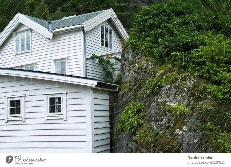 house and courtyard Vacation & Travel House (Residential Structure) Nature Plant Bushes Fern Hill Rock Detached house Architecture Facade Window Stone Wood