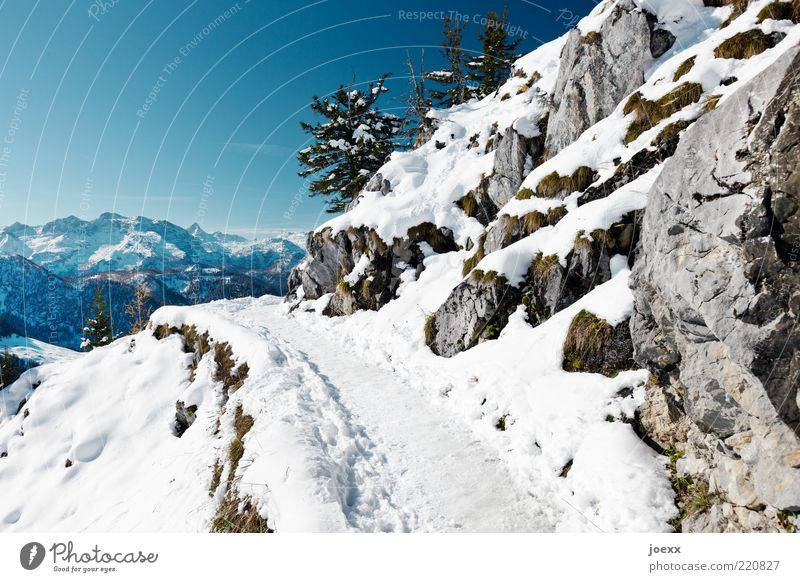 Dangerous Nature Sky Cloudless sky Winter Climate Weather Beautiful weather Ice Frost Snow Rock Alps Mountain Snowcapped peak Lanes & trails Gigantic Cold Blue
