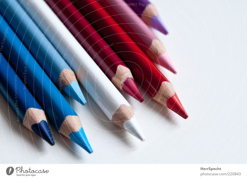 Blue White Red Pen Wood Beautiful New Point Violet Pink Crayon Colour Side by side Beaded Colour photo Multicoloured Interior shot Close-up Detail